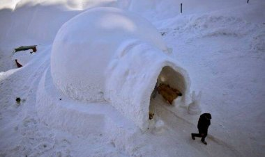Kashmir is now home to India's first Igloo Cafe