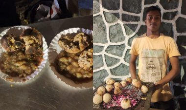 Zomato to assist Mumbai's roadside Lithi Chokha seller after a Twitter user asks for help