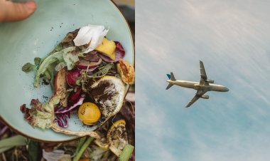 Food waste to be converted into aviation fuel to reduce carbon emissions