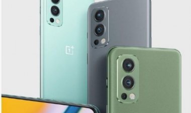 OnePlus Nord 2 and OnePlus Buds Pro launched in India