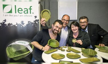 German company adapts Indian leaf plates tradition to launch innovative tableware collection